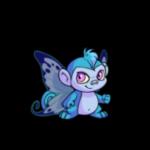 faerie mynci