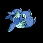 maraquan elephante