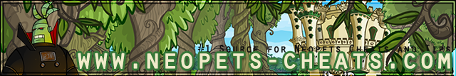 Neopets Cheats